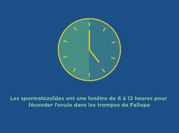 570_Reproduction_Clock_FR